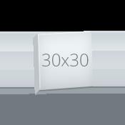Canvas30x30