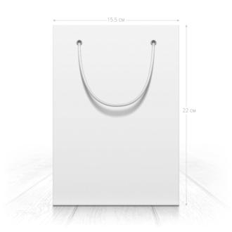Пакет 15.5x22x5 см
